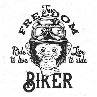 Macaco no capacete de moto