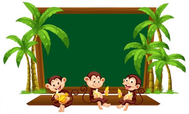 Macaco três no modelo de quadro-negro