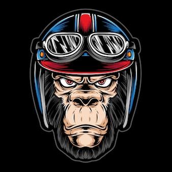 Macaco usando capacete de motociclista