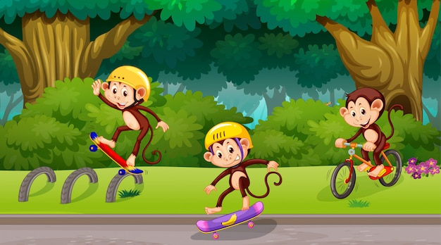 Macacos brincando na cena do parque