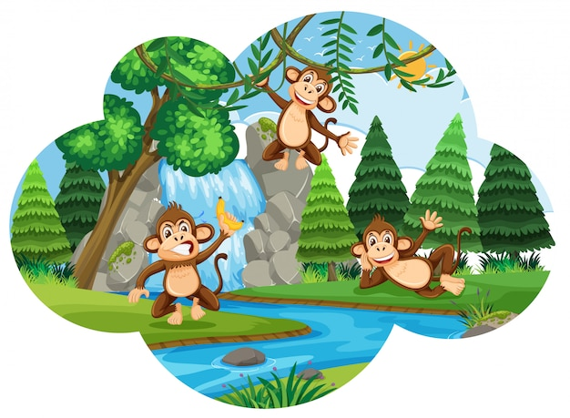 Macacos insolentes na floresta