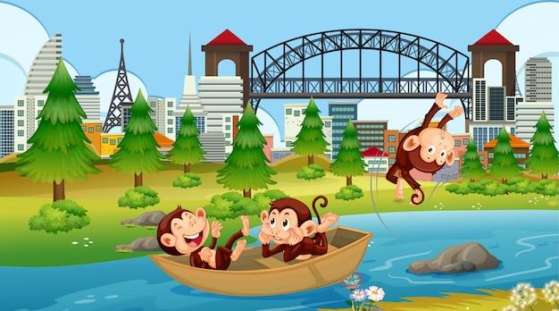 Macacos na cena do barco