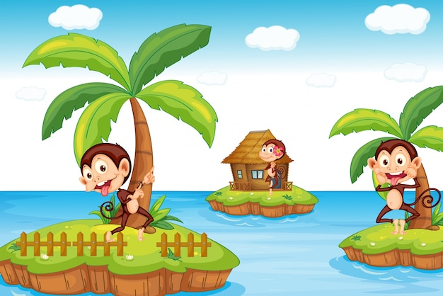 Macacos na praia