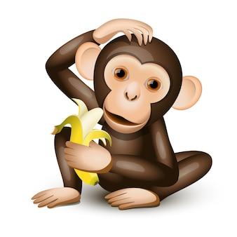 Macaquinho segurando uma banana isolada no branco