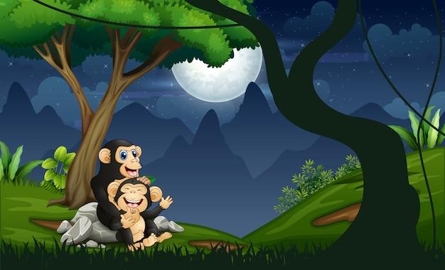 Mãe de chimpanzé com seu bebê na floresta à noite