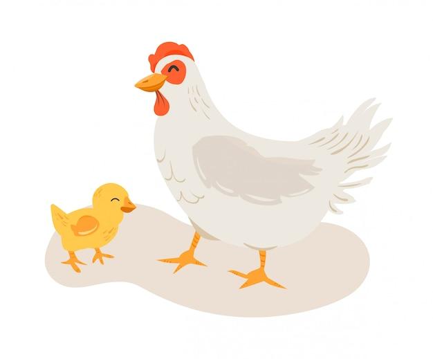 Mãe de galinha e seu filhote