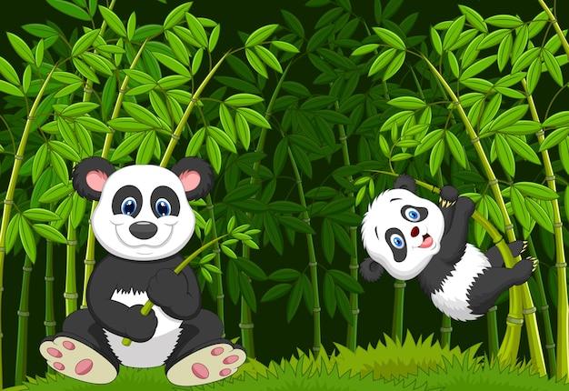 Mãe dos desenhos animados e panda bebê na árvore de bambu de escalada