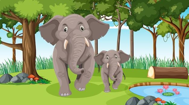 Mãe e bebê de elefante em uma floresta ou cenário de floresta tropical com muitas árvores Vetor Premium