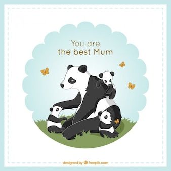 Mãe panda encantadora que joga com seu cartão de filhotes