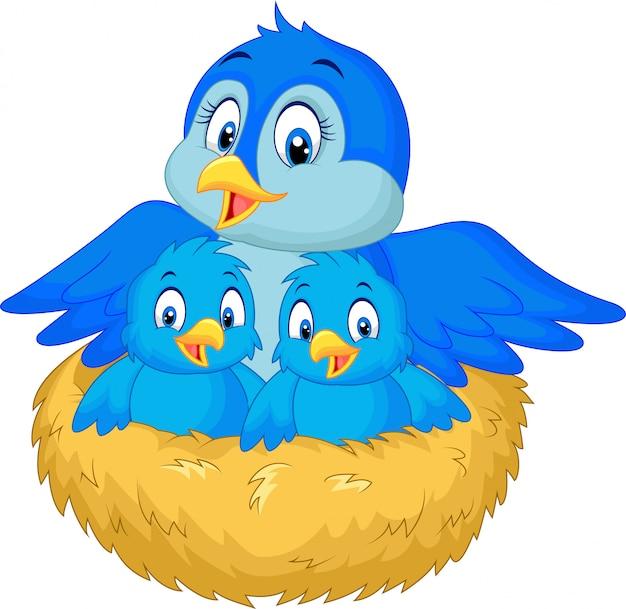 Mãe pássaro com seus dois bebês no ninho