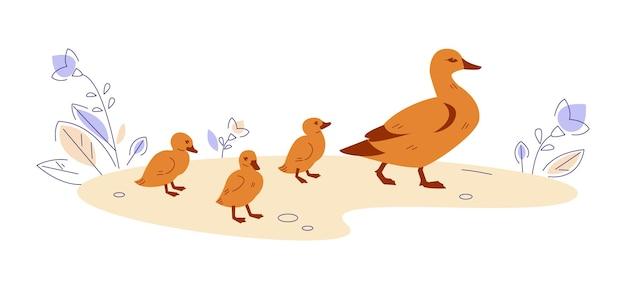 Mãe pato com patinhos na natureza. ilustração vetorial no estilo cartoon plana.