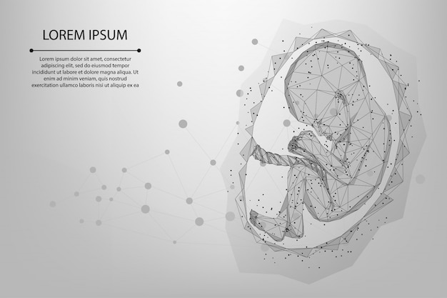Malha e linha abstrata ilustração de wireframe poli baixa gravidez de bebê