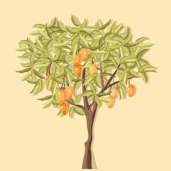 Mangueira botânica desenhada