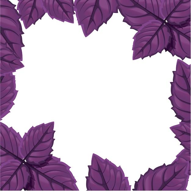 Manjericão verde. ícone de folhas de erva de especiarias. emblema da erva de manjericão verde para elemento na culinária, ingrediente culinário, decoração de embalagem, etiqueta, rótulo.
