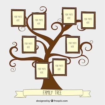 Mão árvore genealógica desenhada