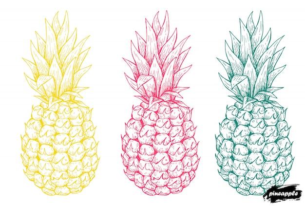 Mão de abacaxi desenhada.