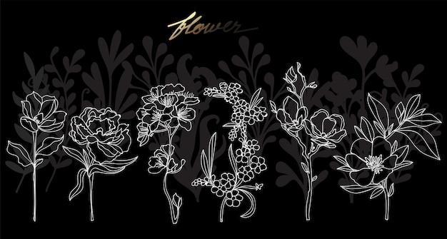 Mão de arte flor desenho e desenho preto e branco com ilustração de arte de linha isolada