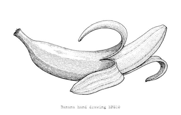 Mão de banana, desenho estilo de gravura, banana preto e branco clipart