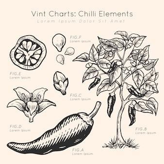 Mão de elementos de pimenta gráficos vint desenhada
