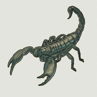 Mão de escorpião desenho ilustração