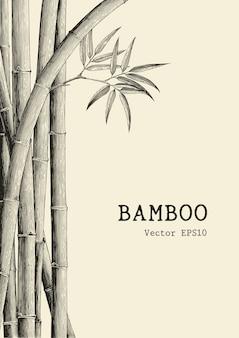 Mão de fundo de bambu desenho estilo de gravura