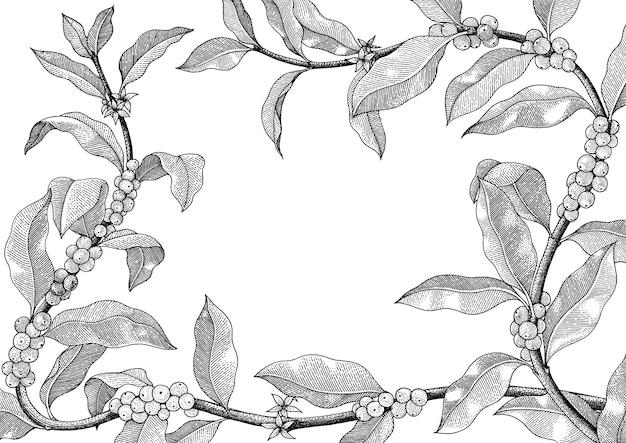 Mão de moldura de café desenho ilustração vintage em fundo branco