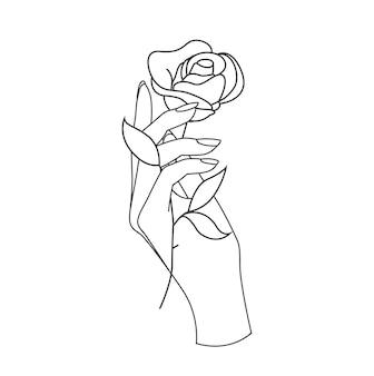 Mão de uma mulher bonita segurando uma flor de rosa isolada no fundo branco
