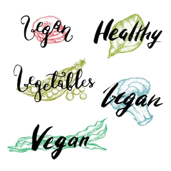 Mão de vegetal saudável desenhado conjunto de letras