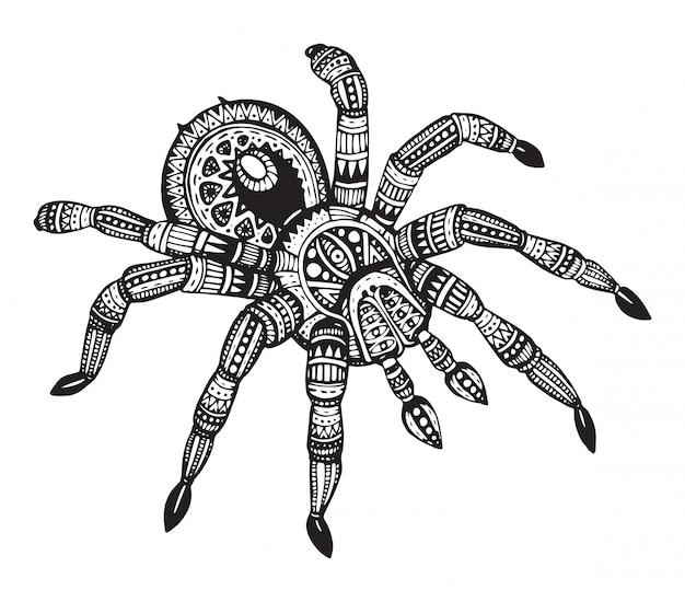 Mão desenhada aranha ornamentada em estilo zentangle.