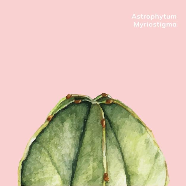 Mão desenhada astrophytum myriostigma