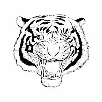 Mão desenhada cabeça de tigre.