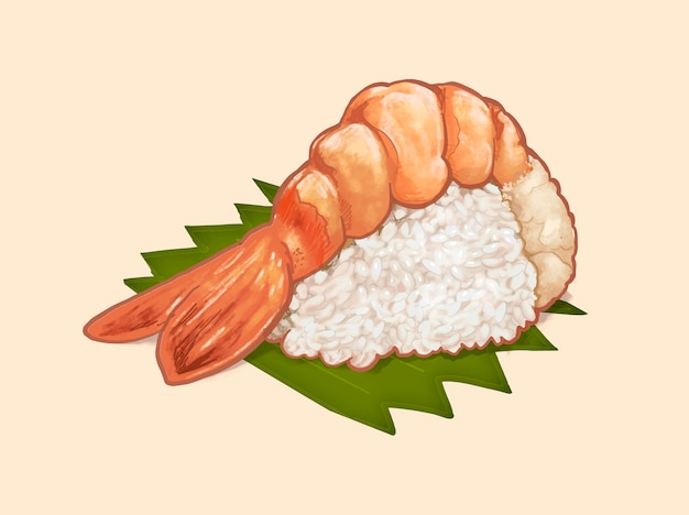 Mão desenhada camarão japonês sushi ou ebi nigiri