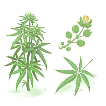 Mão desenhada cannabis verde. conjunto de cannabis estilo aquarela