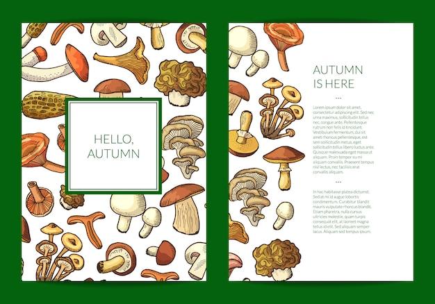 Mão desenhada cartão de cogumelos