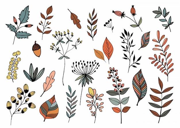 Mão desenhada coleção com diferentes plantas sazonais