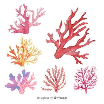 Mão desenhada coleção coral colorida