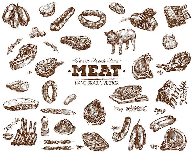 Mão desenhada coleção de carne