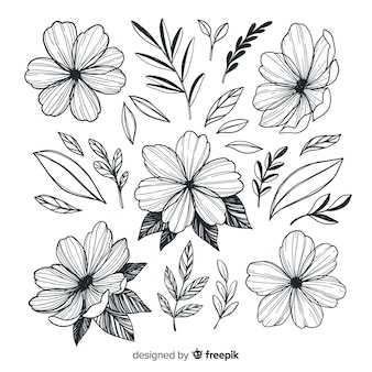 Mão desenhada coleção de flores artísticas
