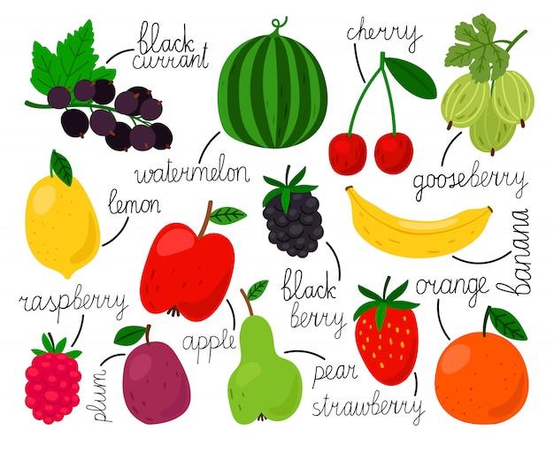 Mão desenhada coleção de frutas