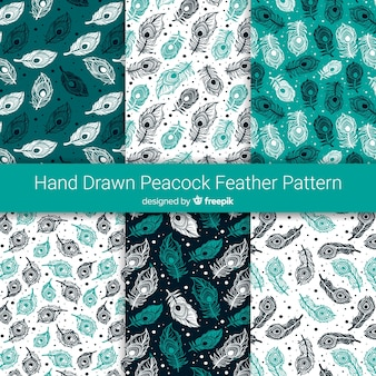 Mão desenhada coleção de padrão de penas de pavão