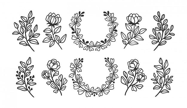 Mão desenhada coleções de elementos florais