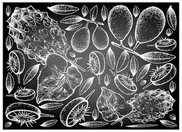 Mão desenhada de ambarella e melão com chifres na lousa
