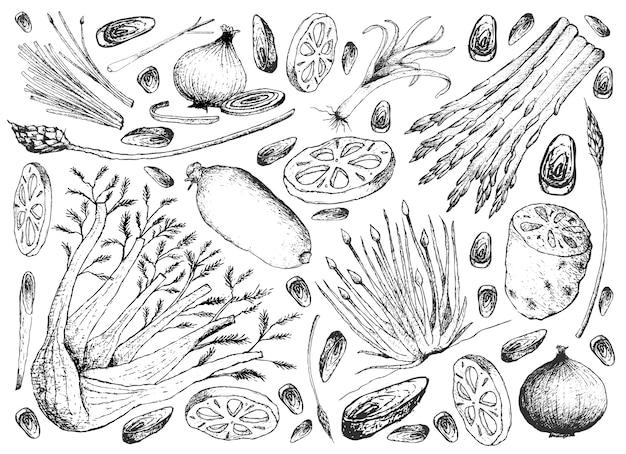 Mão desenhada de fundo de legumes de haste e lâmpada