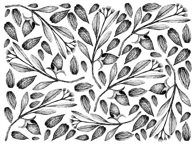 Mão desenhada de fundo de nozes e sementes de jojoba