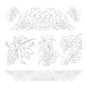 Mão desenhada de lápis, conjunto de uvas.