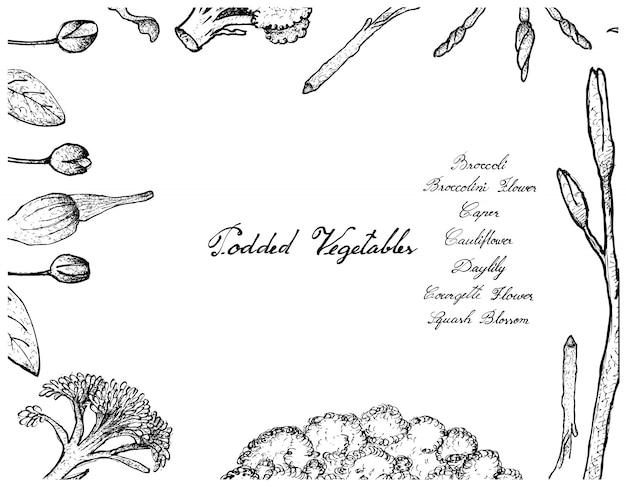 Mão desenhada de quadro de legumes podded