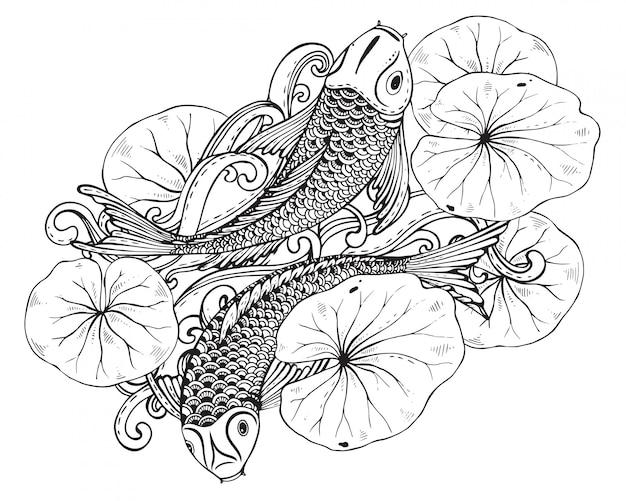 Mão desenhada dois peixes koi com lótus leav