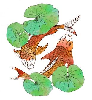 Mão desenhada dois peixes koi