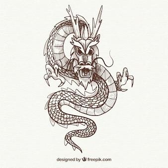 Mão desenhada dragão chinês tradicional