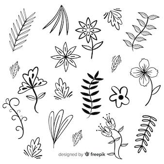 Mão desenhada elementos de decoração floral incolor